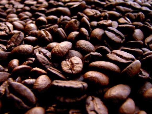 一面に広がる焙煎済みの珈琲豆